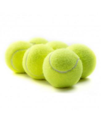 Squeaker Tennis Ball / Dog Ball with Squeaker